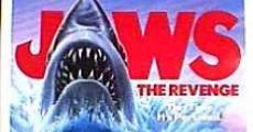 Tubarão 4 - A Vingança